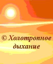 Оранж 205х245 new